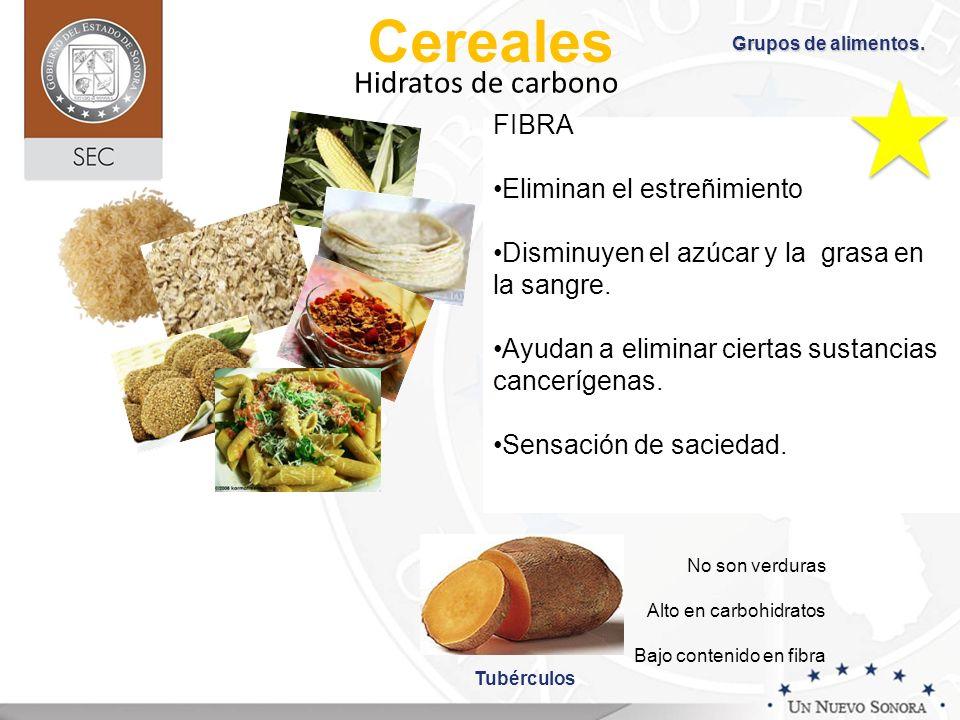 Cereales FIBRA Eliminan el estreñimiento Disminuyen el azúcar y la grasa en la sangre. Ayudan a eliminar ciertas sustancias cancerígenas. Sensación de