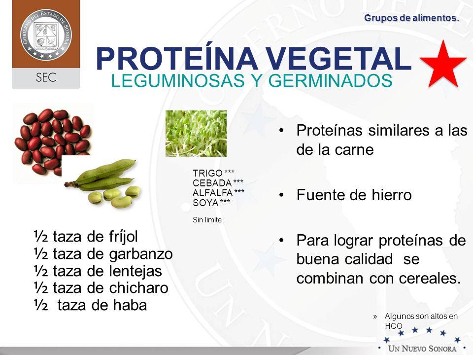 LEGUMINOSAS Y GERMINADOS Proteínas similares a las de la carne Fuente de hierro Para lograr proteínas de buena calidad se combinan con cereales. »Algu