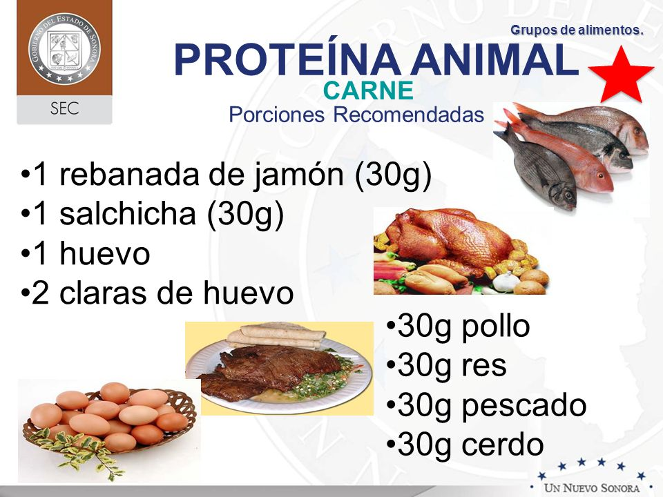 PROTEÍNA ANIMAL CARNE Porciones Recomendadas 30g pollo 30g res 30g pescado 30g cerdo 1 rebanada de jamón (30g) 1 salchicha (30g) 1 huevo 2 claras de h