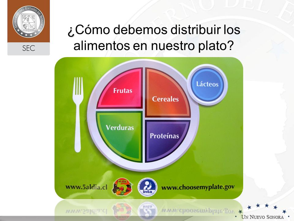¿ ¿Cómo debemos distribuir los alimentos en nuestro plato?