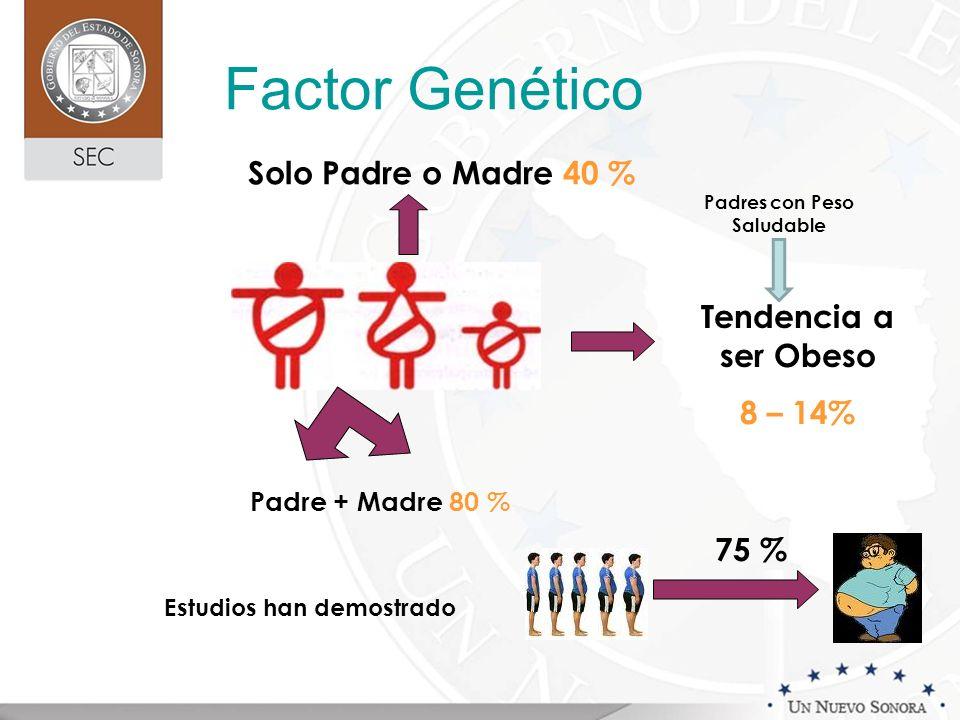 Factor Genético Padre + Madre 80 % Solo Padre o Madre 40 % Tendencia a ser Obeso 8 – 14% 75 % Padres con Peso Saludable Estudios han demostrado
