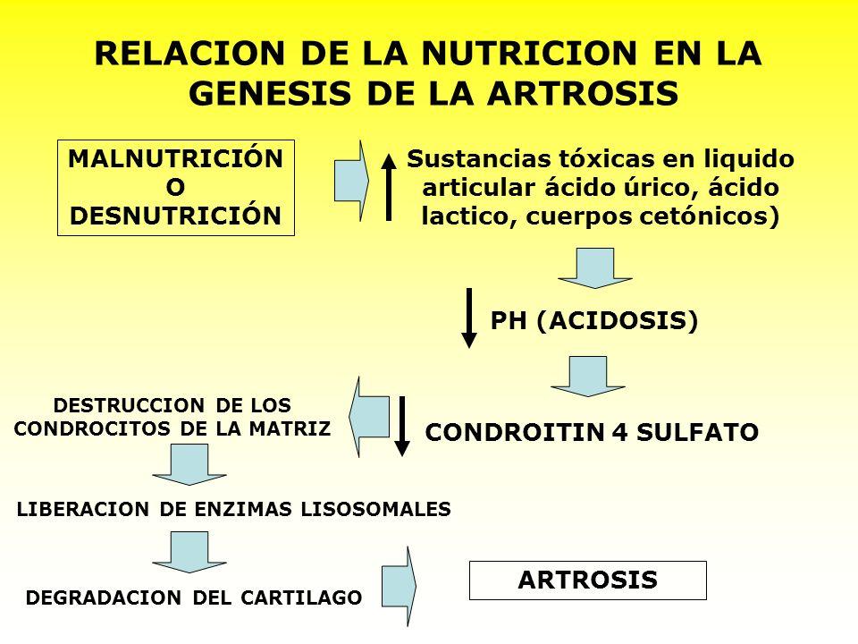 RELACION DE LA NUTRICION EN LA GENESIS DE LA ARTROSIS MALNUTRICIÓN O DESNUTRICIÓN Sustancias tóxicas en liquido articular ácido úrico, ácido lactico,