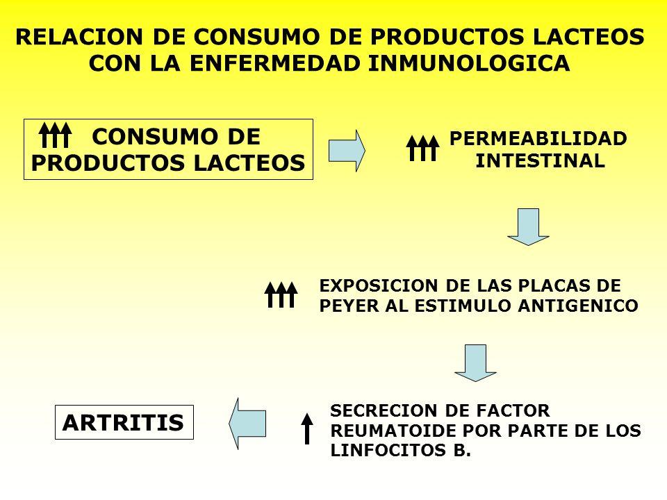 RELACION DE CONSUMO DE PRODUCTOS LACTEOS CON LA ENFERMEDAD INMUNOLOGICA CONSUMO DE PRODUCTOS LACTEOS PERMEABILIDAD INTESTINAL EXPOSICION DE LAS PLACAS