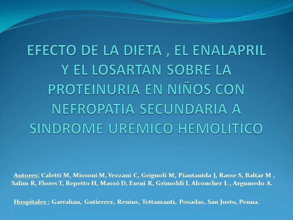 Autores: Caletti M, Missoni M, Vezzani C, Grignoli M, Piantanida J, Rasse S, Baltar M, Salim R, Flores T, Repetto H, Massó D, Exeni R, Grimoldi I, Alc