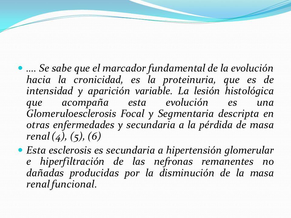 …. Se sabe que el marcador fundamental de la evolución hacia la cronicidad, es la proteinuria, que es de intensidad y aparición variable. La lesión hi