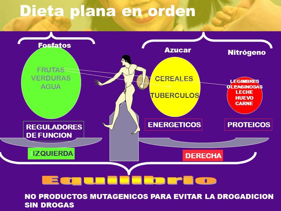 REGULADORES DE FUNCION FRUTAS VERDURAS AGUA CEREALES TUBERCULOS ENERGETICOSPROTEICOS IIZQUIERDA DERECHA LEGIMBRES OLEAGINOSAS LECHE HUEVO CARNE Fosfat