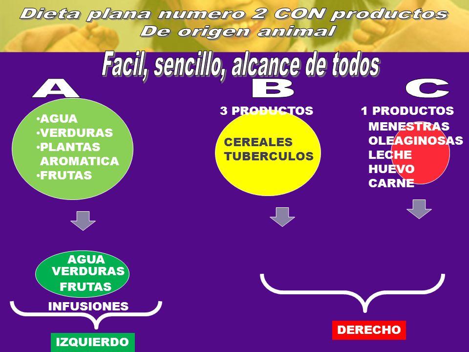 AGUA VERDURAS PLANTAS AROMATICA FRUTAS CEREALES TUBERCULOS MENESTRAS OLEAGINOSAS LECHE HUEVO CARNE IZQUIERDO DERECHO AGUA VERDURAS FRUTAS INFUSIONES 3