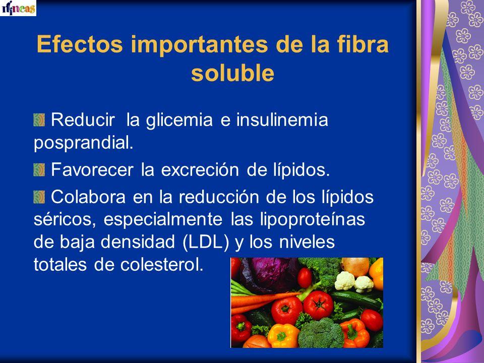 Efectos importantes de la fibra soluble Reducir la glicemia e insulinemia posprandial. Favorecer la excreción de lípidos. Colabora en la reducción de