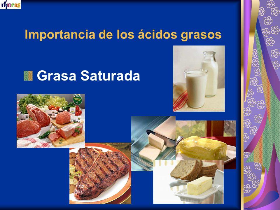 Importancia de los ácidos grasos Grasa Saturada