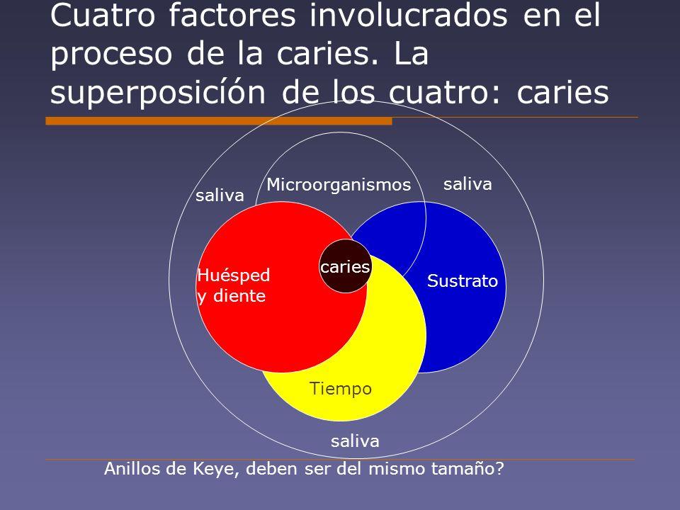 Cuatro factores involucrados en el proceso de la caries. La superposicíón de los cuatro: caries Microorganismos Sustrato Tiempo Huésped y diente carie