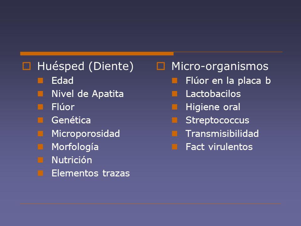 Huésped (Diente) Edad Nivel de Apatita Flúor Genética Microporosidad Morfología Nutrición Elementos trazas Micro-organismos Flúor en la placa b Lactob