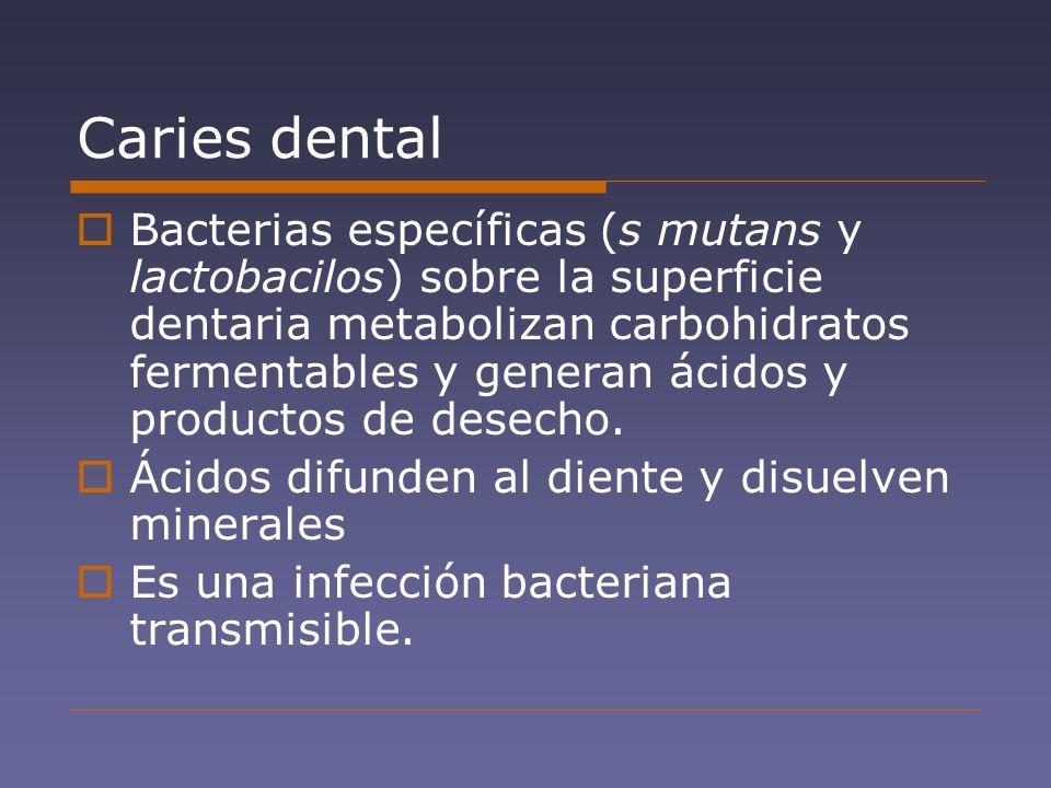 Caries dental Bacterias específicas (s mutans y lactobacilos) sobre la superficie dentaria metabolizan carbohidratos fermentables y generan ácidos y p