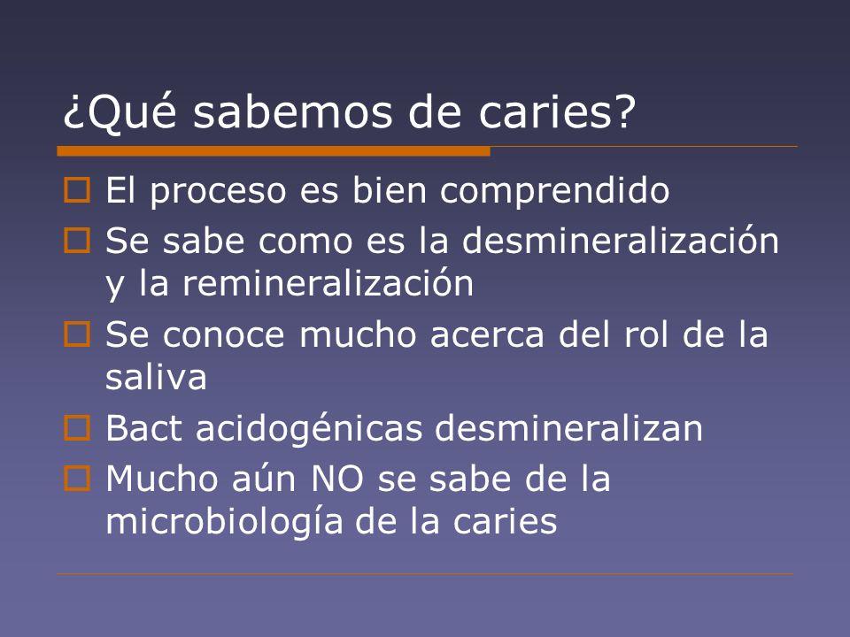 ¿Qué sabemos de caries? El proceso es bien comprendido Se sabe como es la desmineralización y la remineralización Se conoce mucho acerca del rol de la