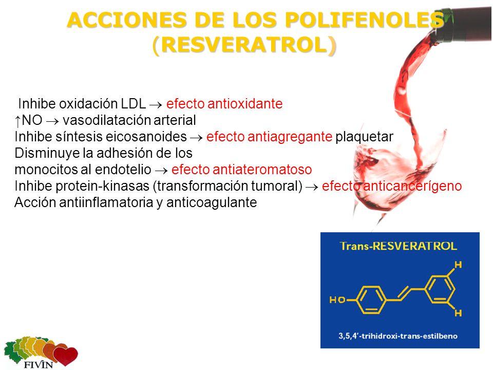 ACCIONES DE LOS POLIFENOLES (RESVERATROL) ACCIONES DE LOS POLIFENOLES (RESVERATROL) Inhibe oxidación LDL efecto antioxidante NO vasodilatación arterial Inhibe síntesis eicosanoides efecto antiagregante plaquetar Disminuye la adhesión de los monocitos al endotelio efecto antiateromatoso Inhibe protein-kinasas (transformación tumoral) efecto anticancerígeno Acción antiinflamatoria y anticoagulante