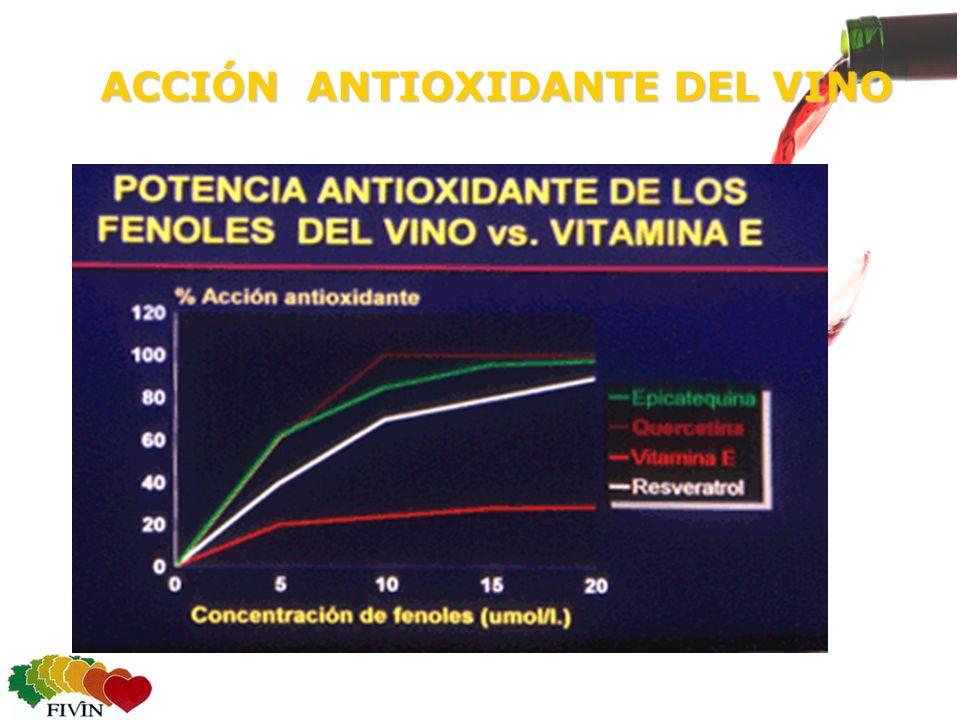 ACCIÓN ANTIOXIDANTE DEL VINO ACCIÓN ANTIOXIDANTE DEL VINO