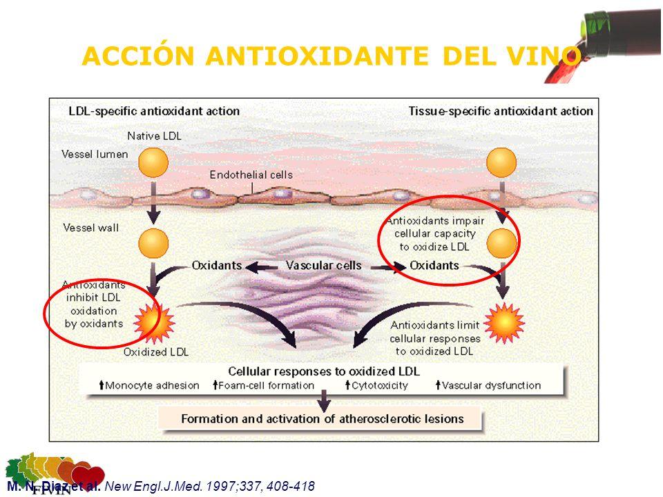 ACCIÓN ANTIOXIDANTE DEL VINO M. N. Diaz et al. New Engl.J.Med. 1997;337, 408-418