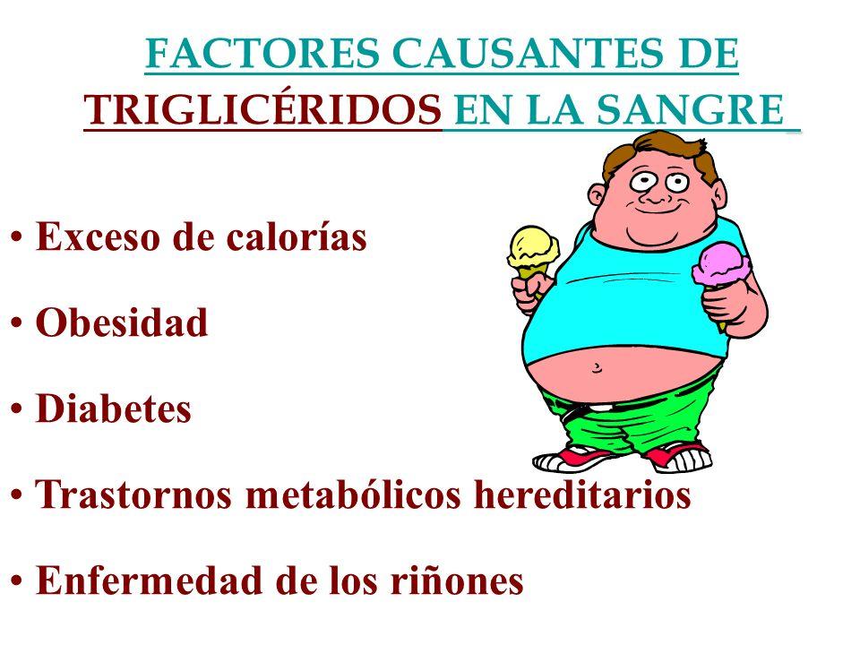 FACTORES CAUSANTES DE TRIGLICÉRIDOS EN LA SANGRE Exceso de calorías Obesidad Diabetes Trastornos metabólicos hereditarios Enfermedad de los riñones