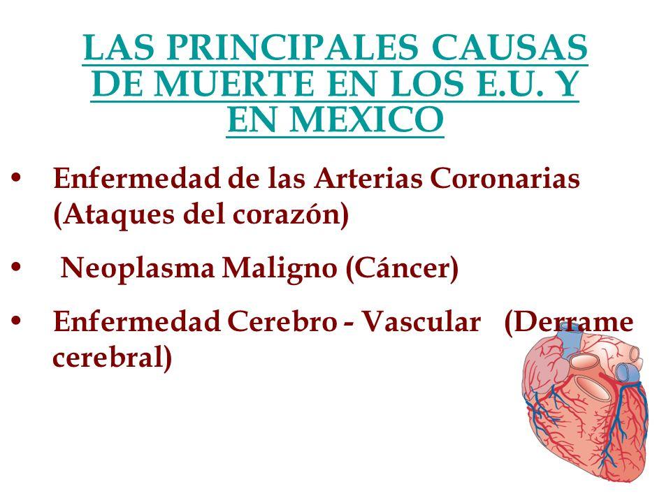 LAS PRINCIPALES CAUSAS DE MUERTE EN LOS E.U. Y EN MEXICO Enfermedad de las Arterias Coronarias (Ataques del corazón) Neoplasma Maligno (Cáncer) Enferm
