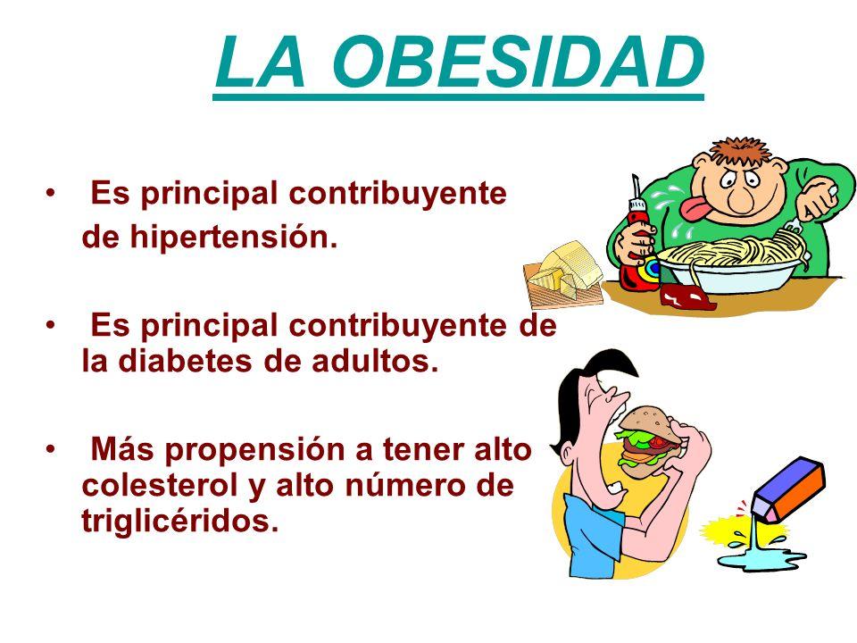 LA OBESIDAD Es principal contribuyente de hipertensión. Es principal contribuyente de la diabetes de adultos. Más propensión a tener alto colesterol y