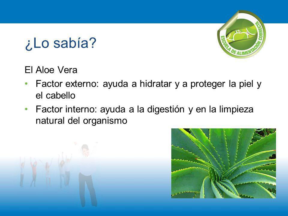 ¿Lo sabía? El Aloe Vera Factor externo: ayuda a hidratar y a proteger la piel y el cabello Factor interno: ayuda a la digestión y en la limpieza natur