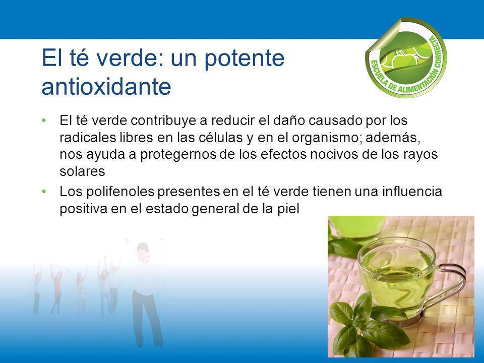 El té verde: un potente antioxidante El té verde contribuye a reducir el daño causado por los radicales libres en las células y en el organismo; ademá