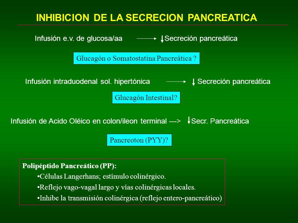 INHIBICION DE LA SECRECION PANCREATICA Infusión e.v. de glucosa/aaSecreción pancreática Glucagón o Somatostatina Pancreática ? Infusión intraduodenal