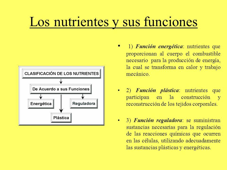 Los nutrientes y sus funciones 1) Función energética: nutrientes que proporcionan al cuerpo el combustible necesario para la producción de energía, la