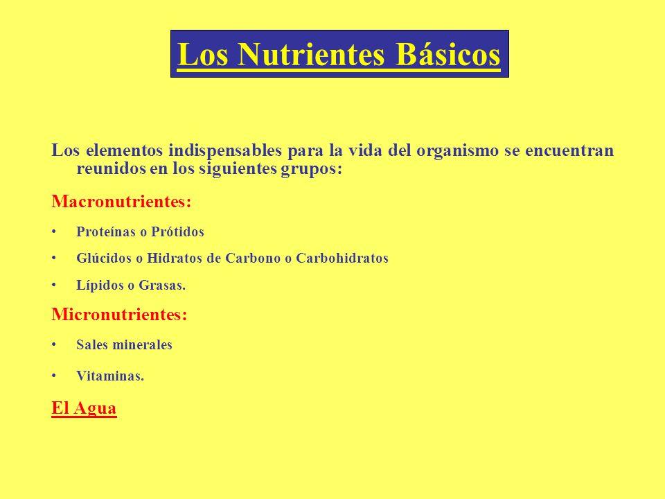 Los elementos indispensables para la vida del organismo se encuentran reunidos en los siguientes grupos: Macronutrientes: Proteínas o Prótidos Glúcido