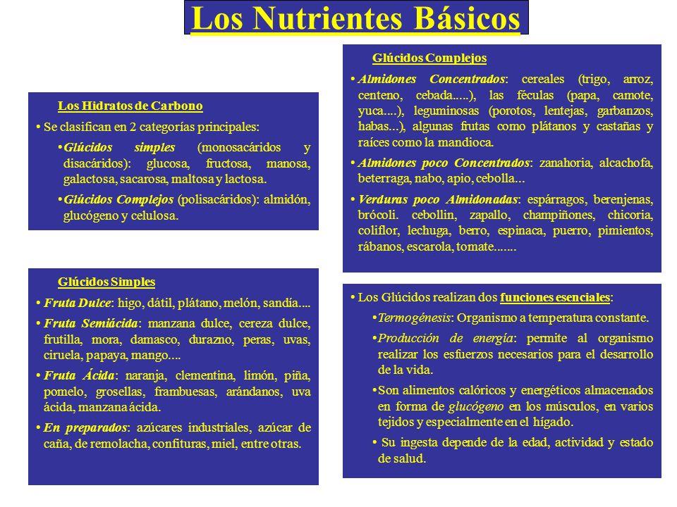 Los Nutrientes Básicos Los Hidratos de Carbono Se clasifican en 2 categorías principales: Glúcidos simples (monosacáridos y disacáridos): glucosa, fru