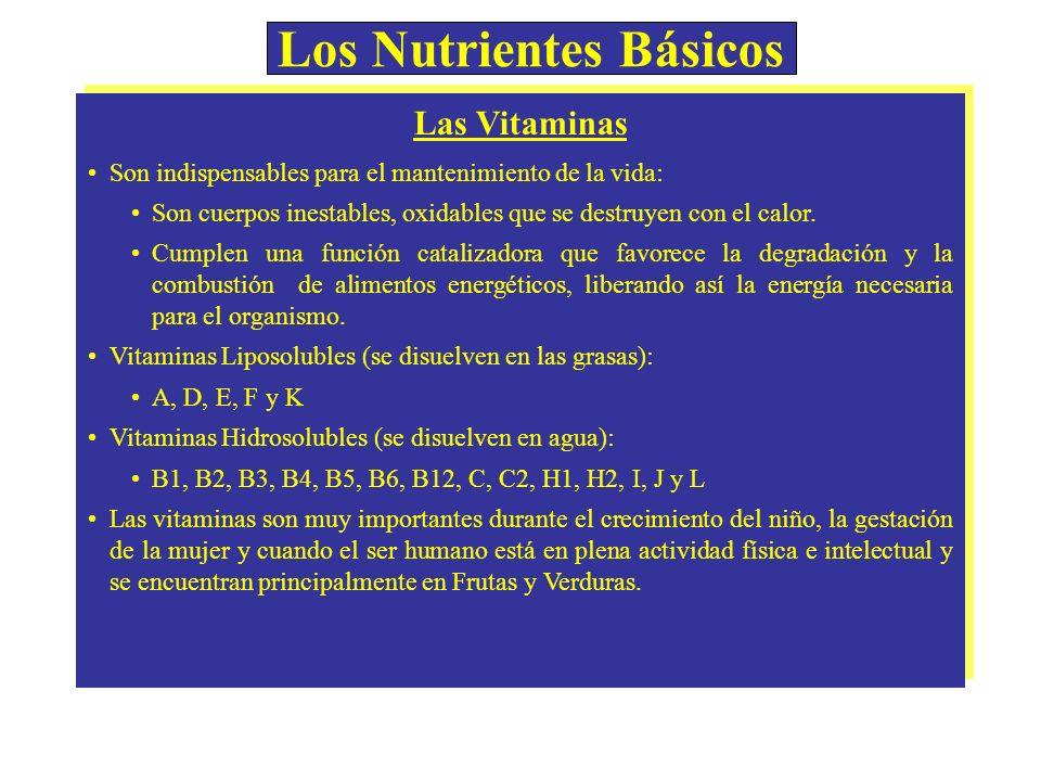 Los Nutrientes Básicos Las Vitaminas Son indispensables para el mantenimiento de la vida: Son cuerpos inestables, oxidables que se destruyen con el ca
