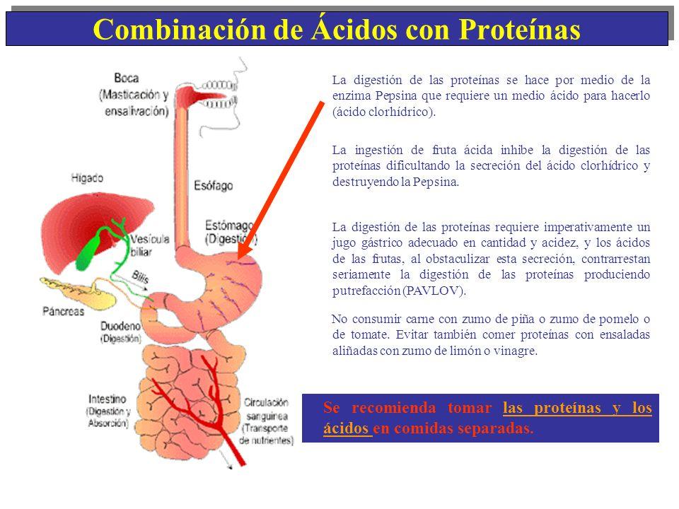 Combinación de Ácidos con Proteínas Se recomienda tomar las proteínas y los ácidos en comidas separadas. La digestión de las proteínas se hace por med