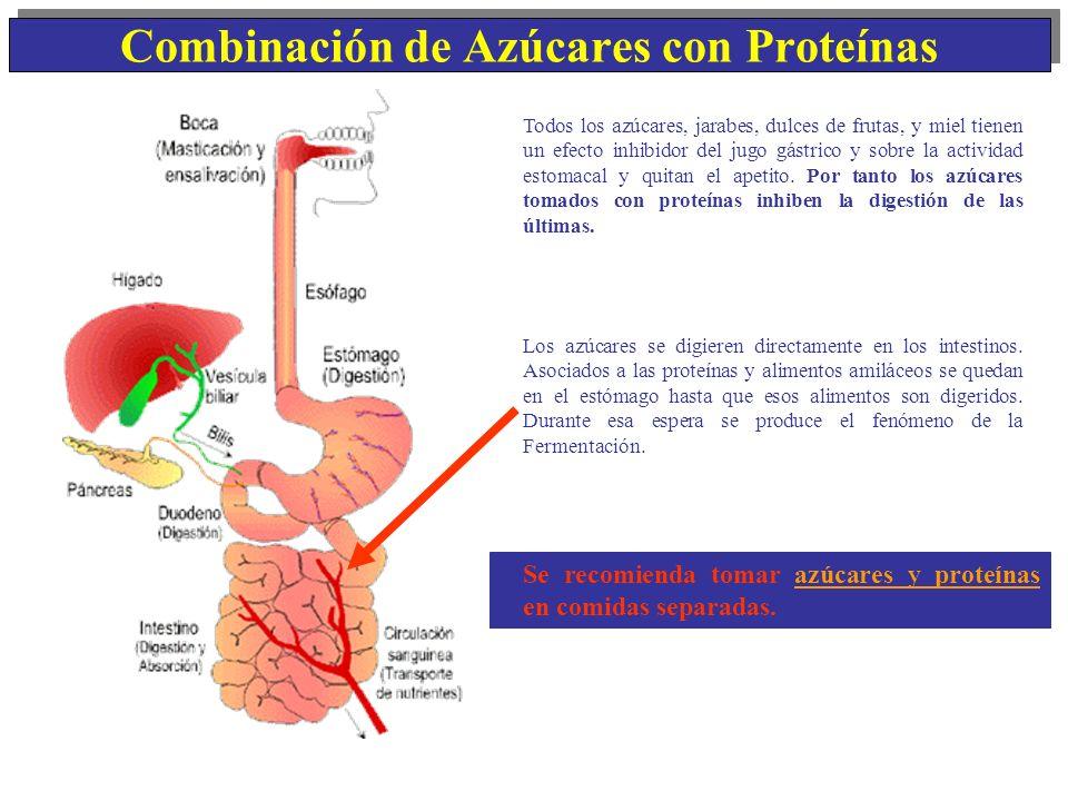 Combinación de Azúcares con Proteínas Se recomienda tomar azúcares y proteínas en comidas separadas. Todos los azúcares, jarabes, dulces de frutas, y