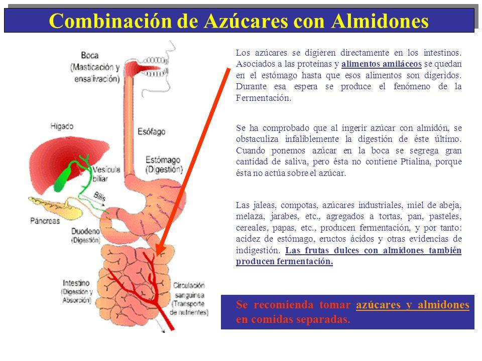Combinación de Azúcares con Almidones Se recomienda tomar azúcares y almidones en comidas separadas. Los azúcares se digieren directamente en los inte