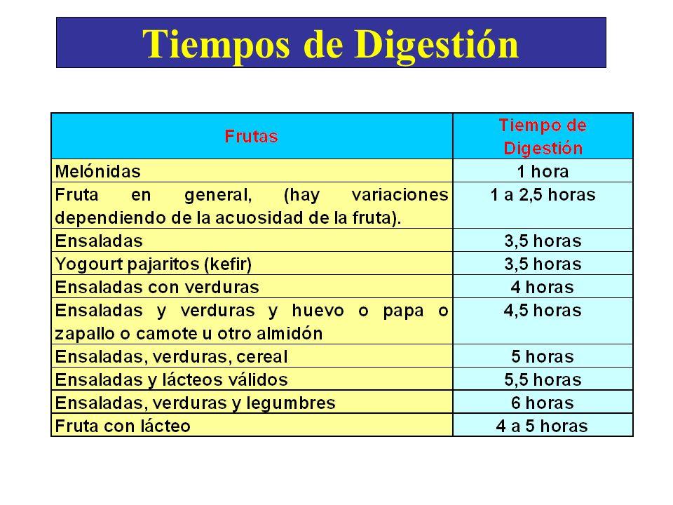 Tiempos de Digestión