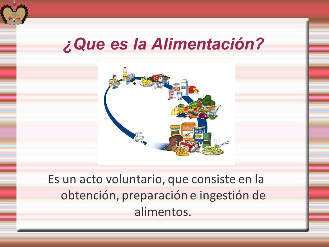 ¿Que es la Alimentación? Es un acto voluntario, que consiste en la obtención, preparación e ingestión de alimentos.