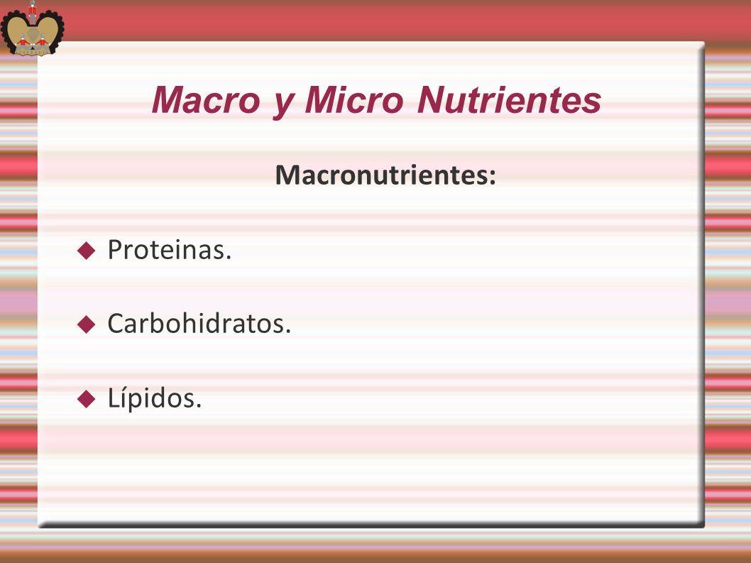 Macro y Micro Nutrientes Macronutrientes: Proteinas. Carbohidratos. Lípidos.