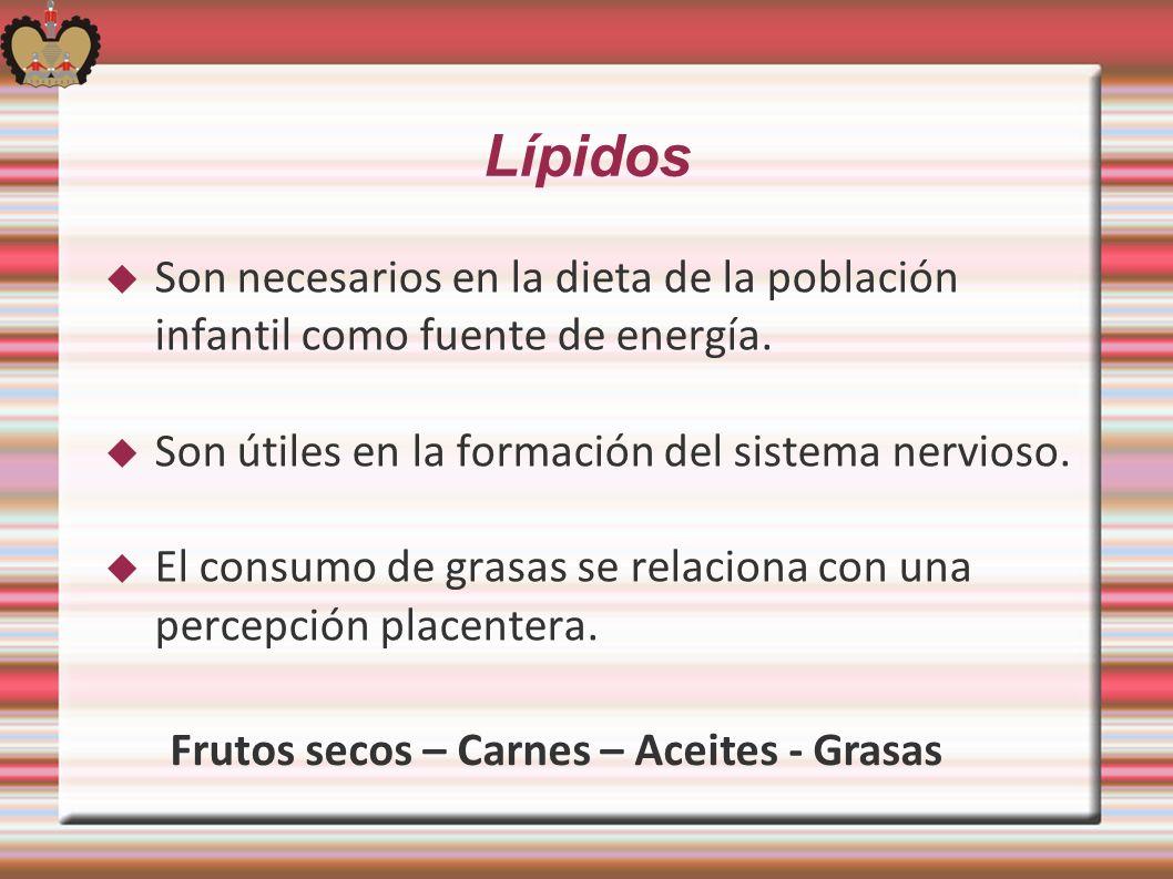 Lípidos Son necesarios en la dieta de la población infantil como fuente de energía. Son útiles en la formación del sistema nervioso. El consumo de gra