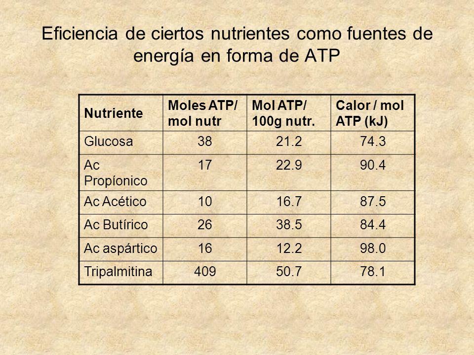 Eficiencia de ciertos nutrientes como fuentes de energía en forma de ATP Nutriente Moles ATP/ mol nutr Mol ATP/ 100g nutr. Calor / mol ATP (kJ) Glucos