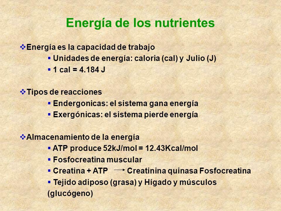 Energía de los nutrientes Energía es la capacidad de trabajo Unidades de energía: caloria (cal) y Julio (J) 1 cal = 4.184 J Tipos de reacciones Enderg