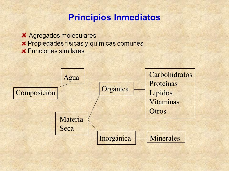 Principios Inmediatos Agregados moleculares Propiedades físicas y químicas comunes Funciones similares Composición Agua Materia Seca Orgánica Inorgáni