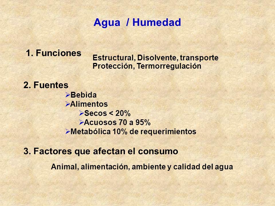 Agua / Humedad 1. Funciones Estructural, Disolvente, transporte Protección, Termorregulación 2. Fuentes Bebida Alimentos Secos < 20% Acuosos 70 a 95%