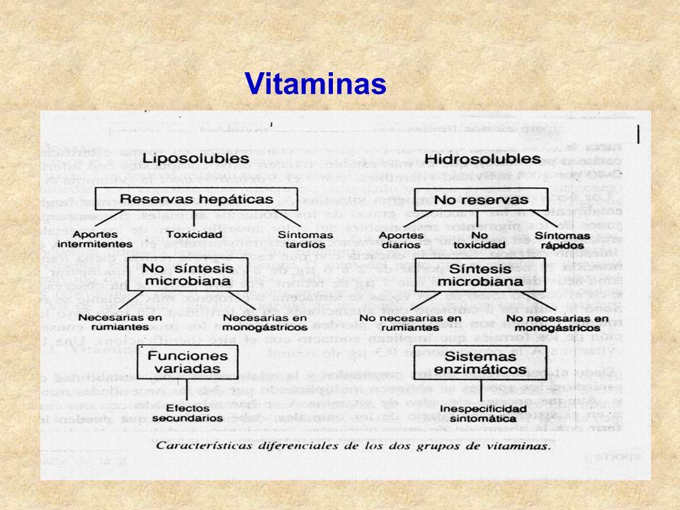 Metabolismo Es el conjunto de reacciones químicas que se producen en el interior de las células y hacen posible la utilización de la materia y de la energía contenida en los alimentos, para el crecimiento, reparación y conservación de un organismo vivo.