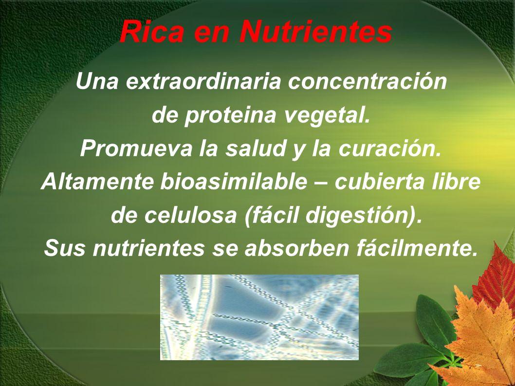 Rica en Nutrientes Una extraordinaria concentración de proteina vegetal. Promueva la salud y la curación. Altamente bioasimilable – cubierta libre de
