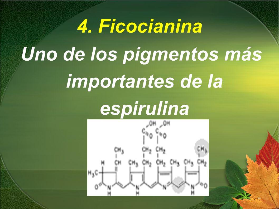 4. Ficocianina Uno de los pigmentos más importantes de la espirulina