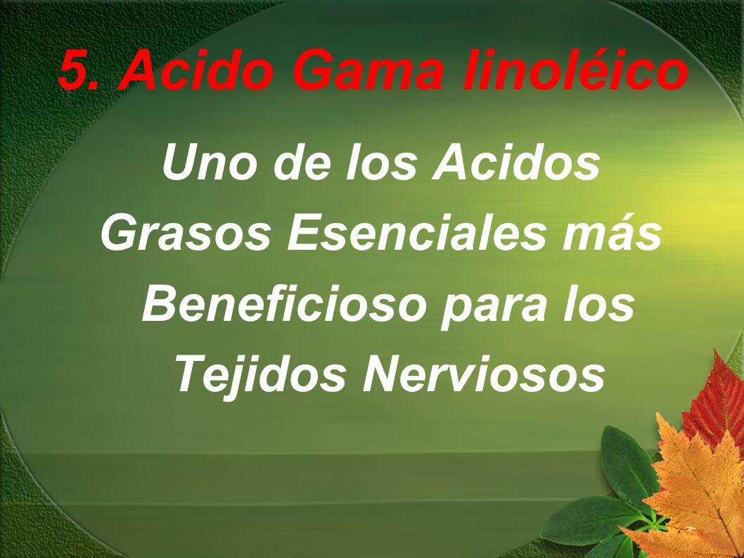 5. Acido Gama linoléico Uno de los Acidos Grasos Esenciales más Beneficioso para los Tejidos Nerviosos