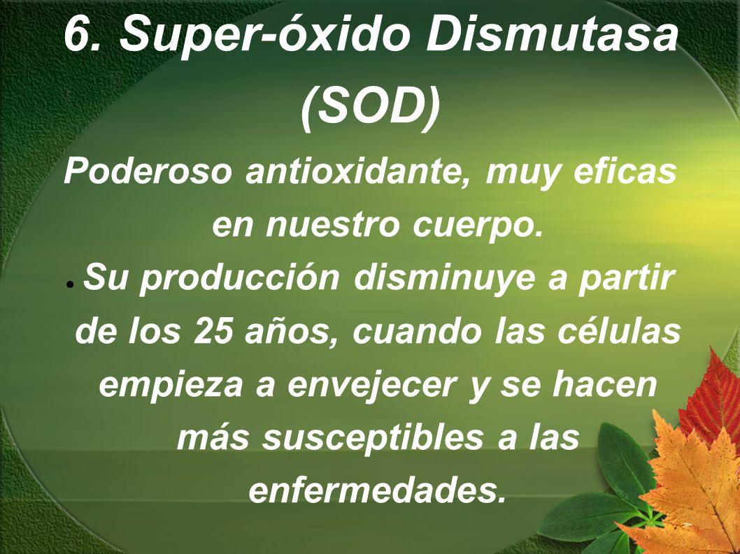 6. Super-óxido Dismutasa (SOD) Poderoso antioxidante, muy eficas en nuestro cuerpo. Su producción disminuye a partir de los 25 años, cuando las célula