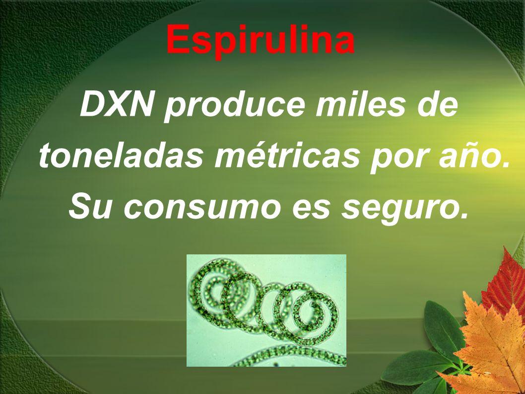Espirulina DXN produce miles de toneladas métricas por año. Su consumo es seguro.