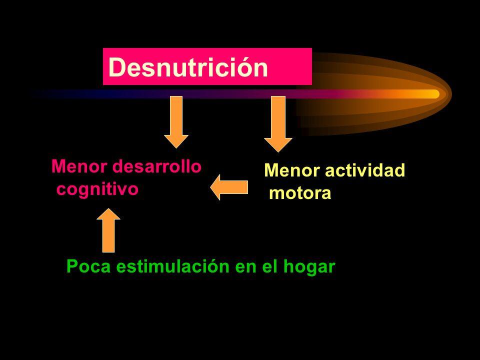 Factores externos en el desarrollo psicomotor Escolaridad de los padres Estimulación temprana Dieta adecuada
