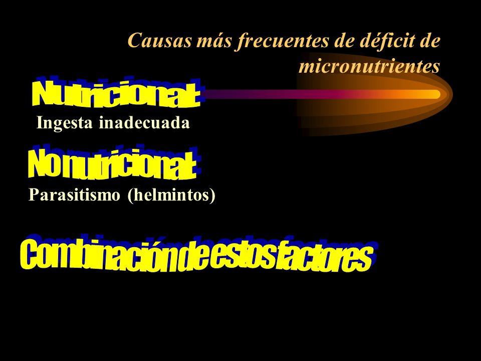 Hierro Yodo Zinc Vitamina A Pueden afectar capacidad de aprendizaje (el organismo no los puede sintetizar) La deficiencia de micronutrientes puede pre
