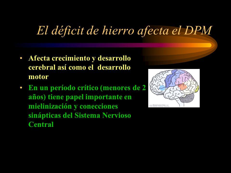 Déficit de hierro Neurona Disminución de neurotransmisores (catecolaminérgicos y GABA) importantes en aprendizaje, memoria, atención y actividad motor
